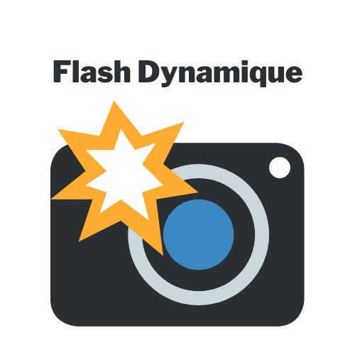 Flash Dynamic