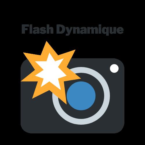 Flash Dynamic